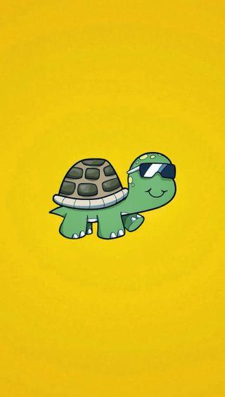 Обои на телефон черепаха, милые