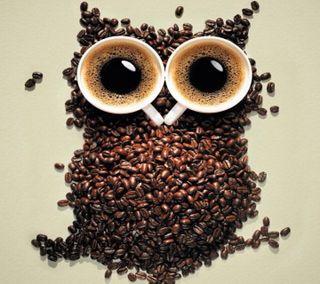 Обои на телефон сова, кофе