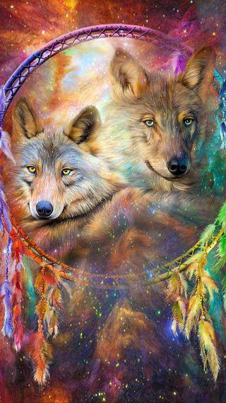 Обои на телефон перо, цветные, фантазия, родной, мечта, ловец, животные, волк
