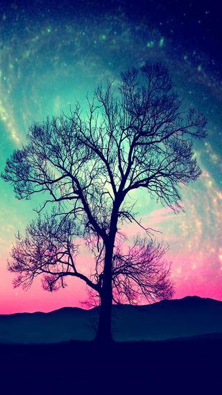 Обои на телефон дерево, природа, поле, ночь, абстрактные