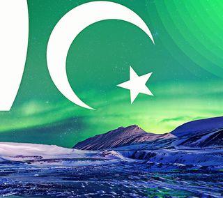 Обои на телефон решить, флаг, поэма, поговорка, пакистан, логотипы, другие, дельфины, высказывания, вода, pakistan flag