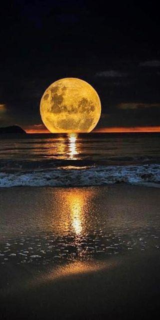 Обои на телефон женщины, солнце, серфить, природа, океан, ночь, море, лунный свет, луна, лес