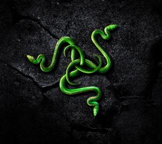 Обои на телефон компьютер, черные, логотипы, змея, зеленые, razer