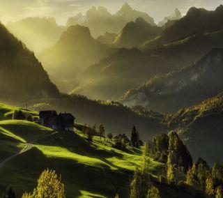 Обои на телефон мечты, природа, осень, зеленые, autumn dreams