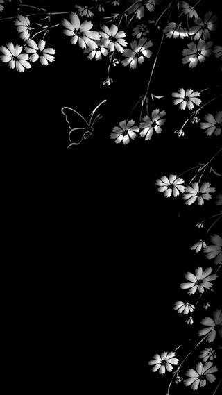 Обои на телефон черные, цветы, белые, бабочки