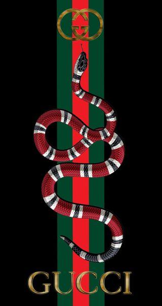 Обои на телефон стиль, гуччи, логотипы, змея, бренды, gucci snake