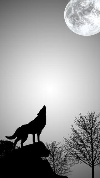 Обои на телефон эффект, мир, луна, жизнь, животные, волк, good