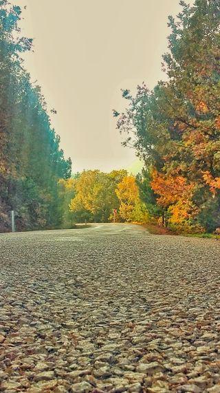 Обои на телефон бумага, стена, пейзаж, осень, новый, лучшие, дорога