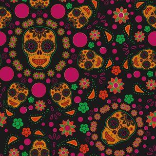 Обои на телефон голова, череп, цветы, цветочные, формы, красочные, векторные, абстрактные