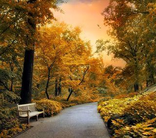 Обои на телефон сад, путь, одиночество