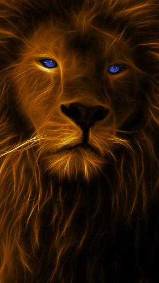 Обои на телефон оранжевые, лицо, лев, король, животные, дикие