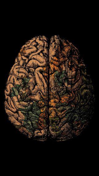 Обои на телефон карта, черные, оранжевые, мозг, зеленые, амолед, hd, amoled