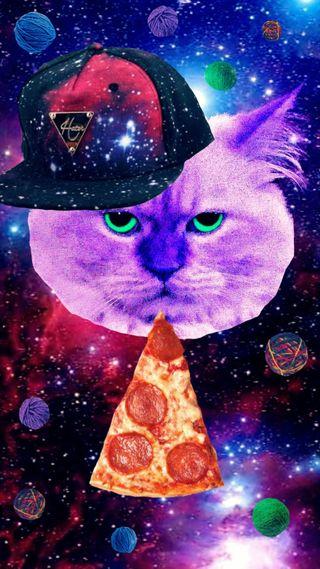 Обои на телефон шляпа, пицца, фиолетовые, крутые, кошки, котята, космос, галактика, вселенная, yarn, pizza cat in space, galaxy