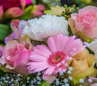 Обои на телефон маргаритка, цветы, розы, дыхание, букет, flower bouquet, babies breath
