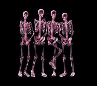Обои на телефон шутка, череп, скелет, забавные, готические, арт, xray, shy skeletons, art