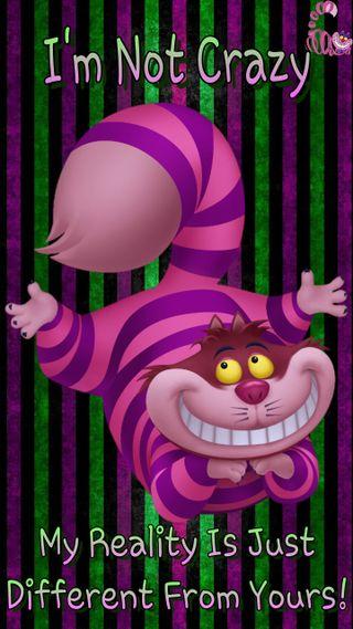 Обои на телефон сумасшедшие, фиолетовые, розовые, полосы, кошки, зеленые, im not crazy