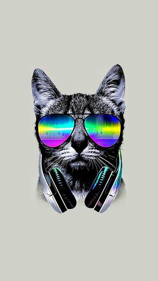 Обои на телефон наушники, хипстер, музыка, крутые, кошки