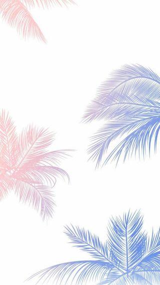 Обои на телефон tumblr, синие, небо, розы, пальмы