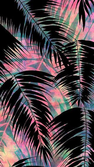 Обои на телефон тропические, абстрактные