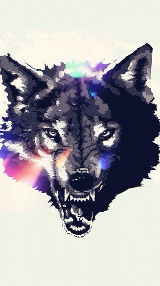 Обои на телефон злые, животные, волк