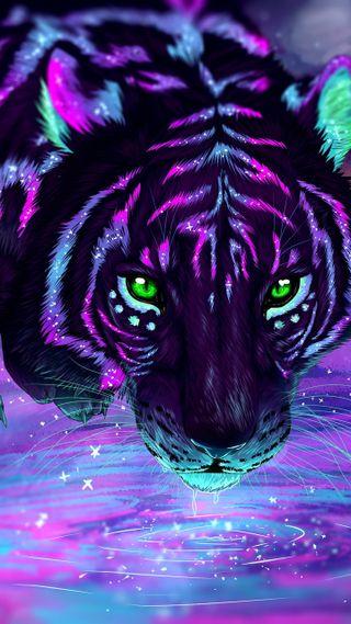 Обои на телефон отражение, тигр, ночь, животные, reflection-tiger