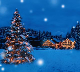 Обои на телефон время, праздник, огни, зима, дерево, winter time