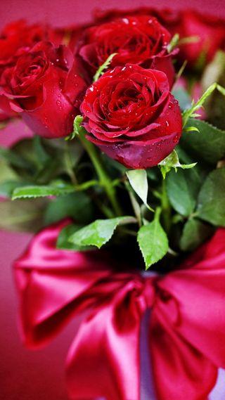 Обои на телефон символ, цветы, розы, природа, прекрасные, любовь, красые, love