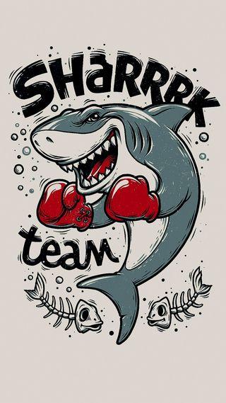 Обои на телефон команда, sharrrk team, icio