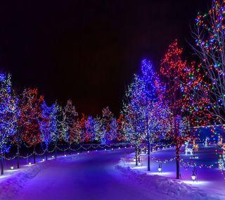 Обои на телефон фиолетовые, свет, природа, ночь, зима, деревья
