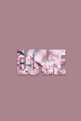 Обои на телефон поцелуй, цветы, сердце, розовые, надежда, любовь, красые, валентинки, валентинка, love
