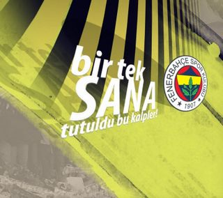Обои на телефон стамбул, футбол, фенербахче, турецкие, спорт, alex de souza