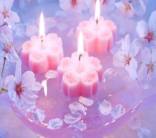 Обои на телефон свечи, цветы, свет, приятные, природа, огонь, новый, любовь, love