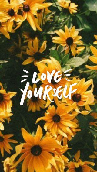 Обои на телефон маргаритка, эстетические, цитата, цветы, радость, подсолнухи, любовь, желтые, love