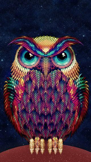 Обои на телефон сова, красота, ночь, милые, красочные, графические, арт