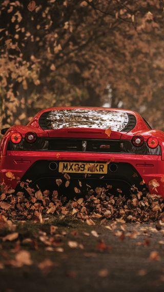 Обои на телефон феррари, скорость, осень, листья, красые, дорога, ferrari