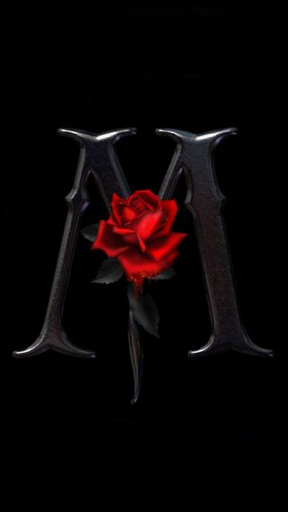 Обои на телефон розы, the m, rose m