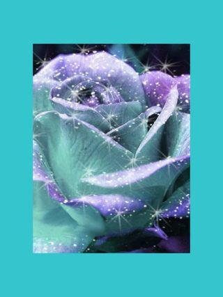Обои на телефон лед, цветы, розы, ice rose