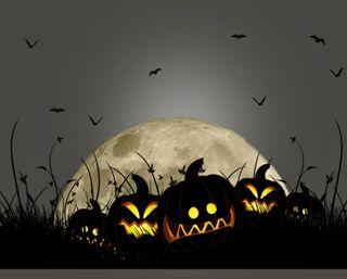 Обои на телефон тыква, хэллоуин, ужасы, темные, счастливые, страшные, силуэт, птицы, ночь, луна, летучая мышь