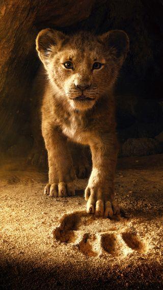 Обои на телефон дикие, фильмы, фильм, маленький, лев, король, животные, анимация, footsteps