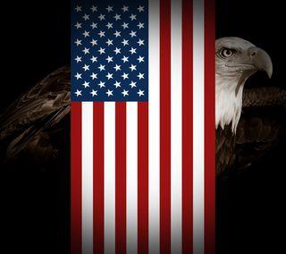Обои на телефон флаг, сша, старые, орел, знамя, usa, old glory