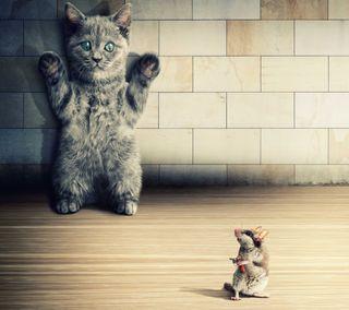 Обои на телефон funny wallpaper, hands up, забавные, руки