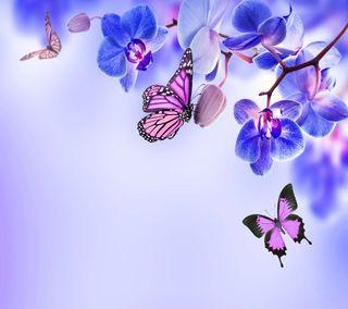 Обои на телефон растения, цветы, насекомое, бабочки, moth