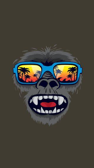 Обои на телефон обезьяны, грани, s7