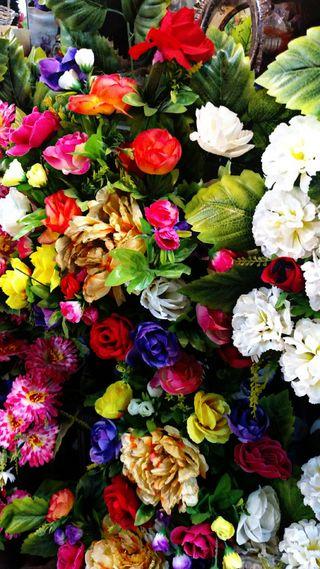 Обои на телефон цветы, цветные, природа, естественные, абстрактные, flowers 4k uhd