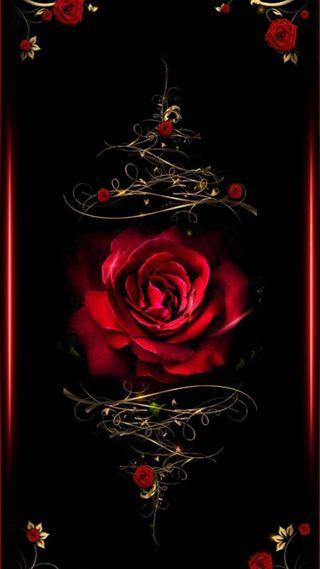 Обои на телефон оригинальные, сердце, розы