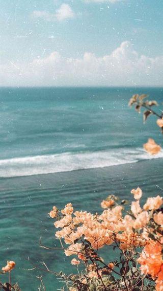 Обои на телефон ретро, эстетические, цветы, пляж, море, закат, винтаж, seaside, 90е