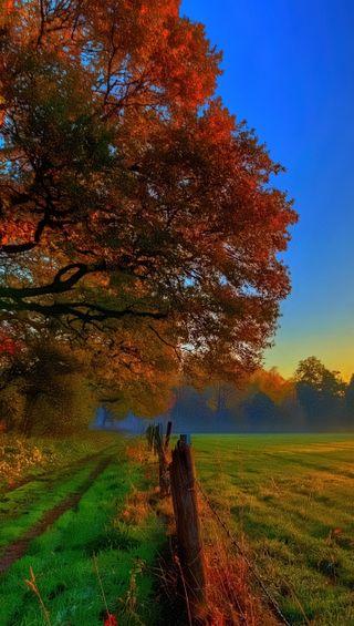 Обои на телефон страна, сезон, природа, погода, пейзаж, осень, абстрактные