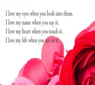Обои на телефон лепестки, чувства, сердце, романтика, розы, пара, любовь, имя, жизнь, love