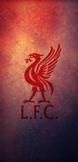 Обои на телефон футбольные клубы, ливерпуль, логотипы, salah, premierleague