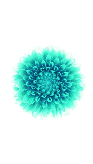 Обои на телефон лотус, цветы, sdn, lotus flower, gsde